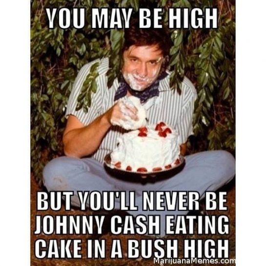 You may be high, but you'll never be johnny cash eating cake in a bush high