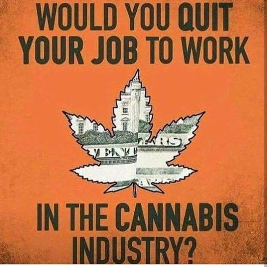 Where's your favorite place to get high? . . #weed #weedporn #weedstagram #weed420feed #weedlife…