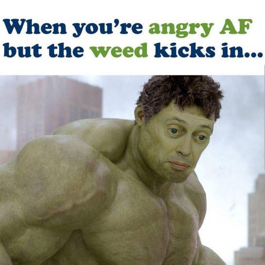 Stay calm #weedmeme #weed #smoke #normaliseramera #cannabis #adhd #add #follow4follow
