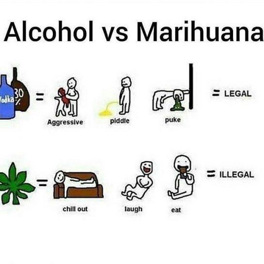 Weed, Weed and Weed . . #weed #weedporn #weedstagram #weed420feed #weedlife #weedsociety #cannabis #thc…