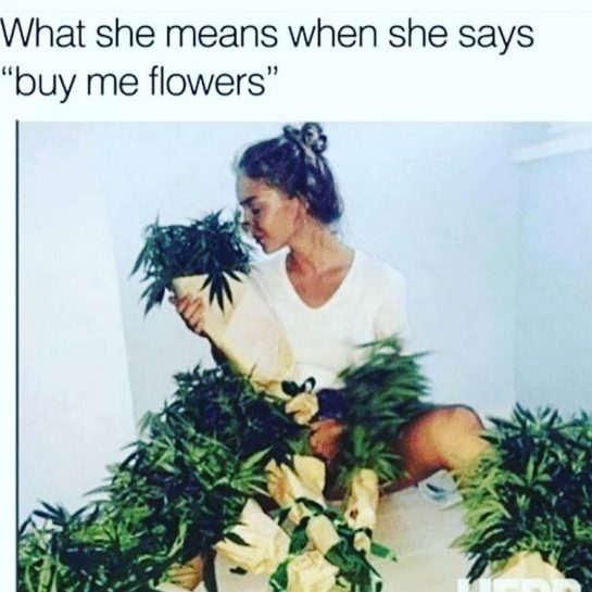 You can keep the roses 🌹 #420Problems#tuesday #goodmorning #weed #weedmemes #420 #cannabis #funnyweedmemes #stonergirl #prettystoner #smoke #rollup #romantic via @ericalaprieta510
