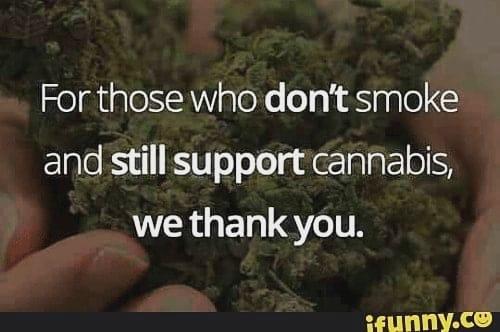 Nothing but love for y'all, thank you 😊👽 #420Problems#weedstagram420 #weedhumor #weedmemes #weednation #weedlove #hitsblunt #highsociety #follow #hightimes #cannabiscommunity #420 #instafamous #instaweed #instafollowers #follow #kush #kushgang #stoners #stonercommunity #instafollowers #stoned #haze #710 #marijuana #maryjane #hippie via @saintdarkangel