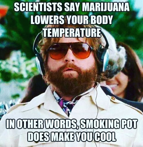 #420Problems#weed #ganja #cannabis #weednews #legalweed #makeweedlegal #weedstagram #420 #highsociety #high #stoner #pot #stoned #stonernation #haze #kush #hightimes #weedcommunity #potheadsunity #fuelbythc #IcanMedicate #Godfirstplant #heavenskeys #weedfunnies via @higherpoweer