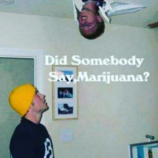 #420Problems, #420funnies, #420memes, #marijuanafunnies, #weedfunnies #boredasfuck via @psycho_5alad_420