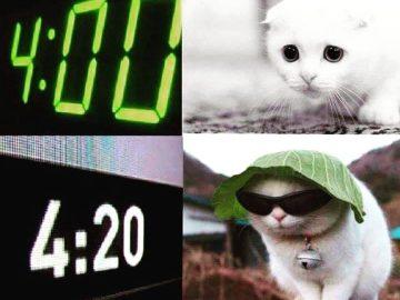 #420Problems#spacecakesboutique #wakeandbake #weedhumor #funnyweedmemes #gethigh #cannabiscommunity #420humor #funny420memes #sativa #sativadivas #indicacouch #indica #cheechandchong #weeddisney #bongbeauties #bongs #bongrips #dab #stonerdays #stonergirl #stonerhumor #marijuanahumor #maryjane via @spacecakesboutique