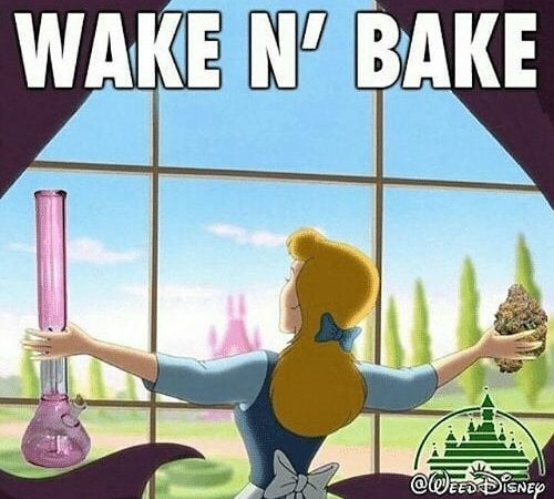 Good morning! #420Problems#spacecakesboutique #wakeandbake #weedhumor #funnyweedmemes #gethigh #cannabiscommunity #420humor #funny420memes #sativa #sativadivas #indicacouch #indica #cheechandchong #weeddisney #bongbeauties #bongs #bongrips #dab #stonerdays #stonergirl #stonerhumor #marijuanahumor #maryjane via @spacecakesboutique