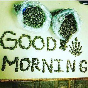 Good Morning my fellow stoners 😊✌🏻🤘🏻🔥💨💚 #420Problems#wakenbake #highlife #highsocitey #highmom #stonerchick #stonercouple #cannabiscommunity #cannamommy #710community #710lover #stonermom #girlswhodab #dabchick #dabsfordays #420everday #budlife #budlove #staylifted #weedstagram #dabstagram #dablife #momswhodab #parentsforpot #710moms #bongsareagirlsbestfriend #420mom #stonermemes #memesfordays #dailymemes #420funnies via @cannasammy92