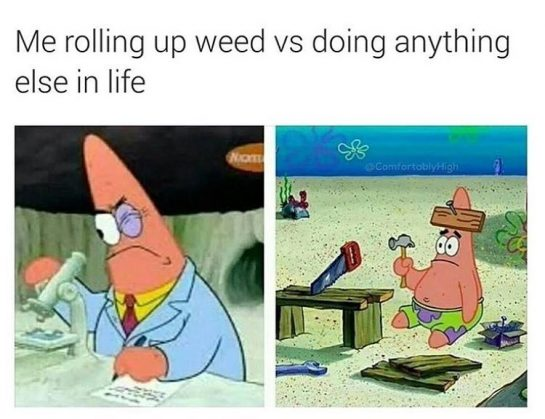 Just try hard and have fun #420Problems #sloth #weedmemes #funnyweedmemes #dankweedmemes #marijuanamemes via @your.favorite.sloth
