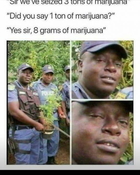 Still makes me crack up every time I read this #420Problems#wealldoit #legalize #legalizemarijuana #funnyweedmemes #mmjlife via @azmmjpatient