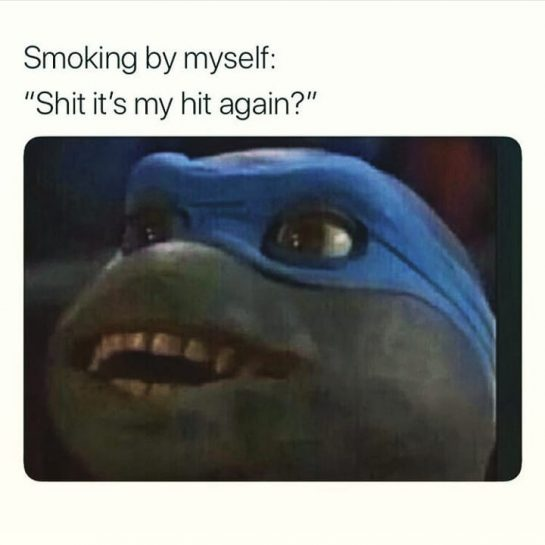 When your smoking solo'.😂 #420Problems#weedporndaily #weedstagram420 #420memes #smokingweed #funnyweedmemes via @juliee.zvla_x