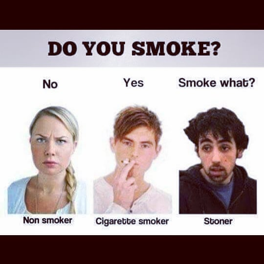 Smoke What?? 😆😆 . . #420Problems#cannabisgram #weedgram #cannabiscommunity #weedsociety #weedmemes #cannabisdaily #weed #cannabissociety #weedismedicine #fuckcigarettes #smokeabowl #weedismymedicine #smokewhat #😆 #thc #cbc #mmj #stonerlife #stonermemes #haha #weedislife #cannabislife #toofunny #ilovememes #memesdaily via @mooseandloki