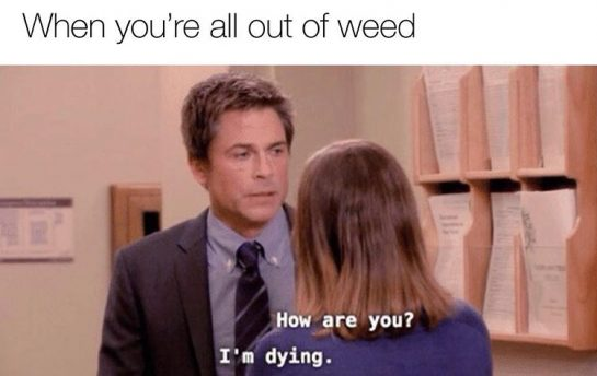 Someone help a brotha out #420Problems#sloth #weedmemes #funnyweedmemes #dankweedmemes #marijuanamemes via @your.favorite.sloth