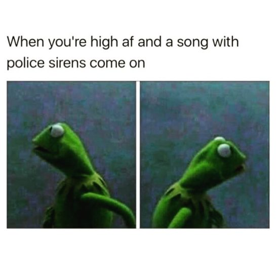 Without fail. Every time. 🐸 #weedthemehumor #kermitthefrogmemes #musicfail #cannabislifestyle #highaf😂 #funnyweedmemes #marijuanalife #baked #cannabisculture #sirenssong #youcanrelate #bud #weedfacts via @kingtutsca