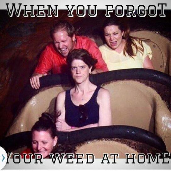 For real yo lol #420Problems#cannabishumor#weedhumor#marijuana#blaze#weed#ganja#funnystonershit#dabs#dabsallday#420#stoner#stonerhumor#cannabis#packit#fatdabs#dabhumor#kush#kushlovers#legalizeweed#legalizeit#420humor#cartoonstoners#gethigh#loveweed#funny#funnyshit#funnystonershit#supportyourfellowstoners via @cannabis__humor