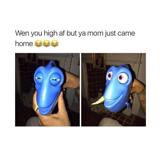 When you high af but ya mom just came home
