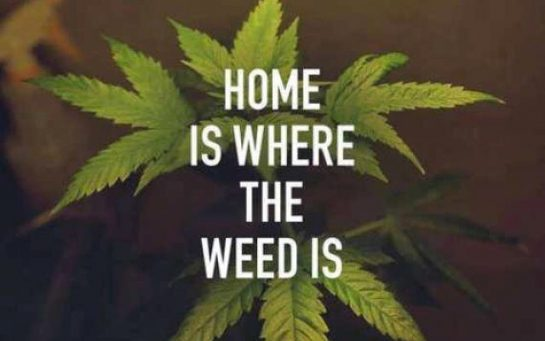 Home is where the weed is