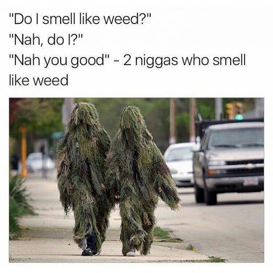 Do I smell like weed? Nah, do I? Nah you good - 2 niggas who smell like weed