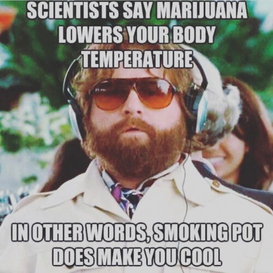 Scientists say marijuana lowers your body temperature - in other words smokin pot DOES make you cool!