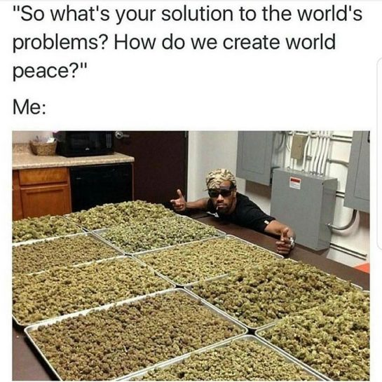So what's your solutions to the world's problems? How do we create world peace?