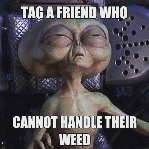 Tag a friend who can't handle their weed
