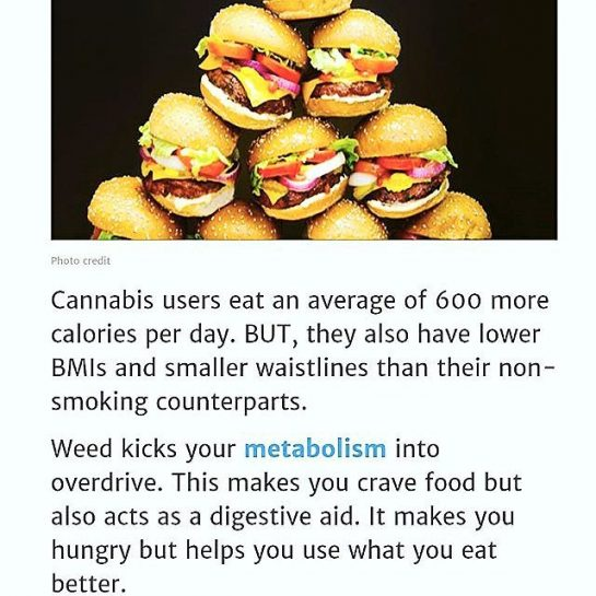 Cannabis and You! #Weightloss . . | #azmmjdr #weedcard #CannabisCommunity #Munchies #cannabisfitness #fitstoner #weedfacts…