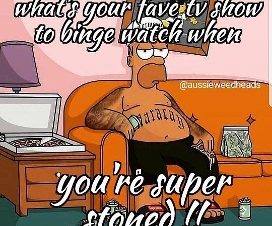 Rick and Morty/South Park …no doubt about 🤥 . . . . . #stoned…