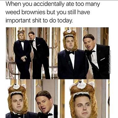 I'm fine...this is fine...🙂🍫🤤 #420Problems#gordssmokeshop #haha #edibles #420funny #cannabis #marijuana #reddeersmokeshop #professionalsbeingprodessional via @gordssmokeshop