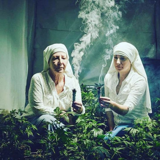 A photographer found these nuns selling and smoking weed😂👌I think all nuns should do this😏🍁 ° ° ° #420Problems#420 #710 #weedcomedy #viral #funnyweed #drugs #smoke #smoking #meme #dank #bud #haze #stoner #stonermemes #stoner #cannabis #hemp #jonko #cannabisculture #kush #haze #nuns via @420sokong