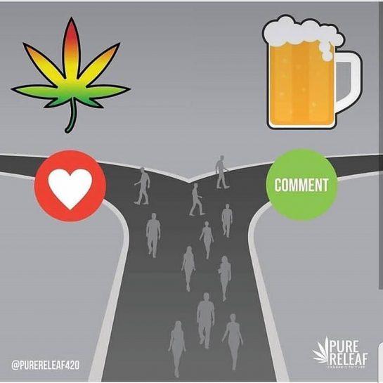 Pick one (or both idgaf😂)🌿 . . . . . . . . . . #420Problems#weedlife #weedsociety #weedhumor #weedmemes #marijuana #maryjane #ganja #kush #bud #smoke #trees #pot #stoner #420 #420life #stonerlife #stonersociety #stonerhumor #pothead #potheadsociety #potheadhumor #smokeweed #smokeweedeveryday #high #highaf #highlife #highsociety #roll #smoke #joint #blunt via @2high_2think
