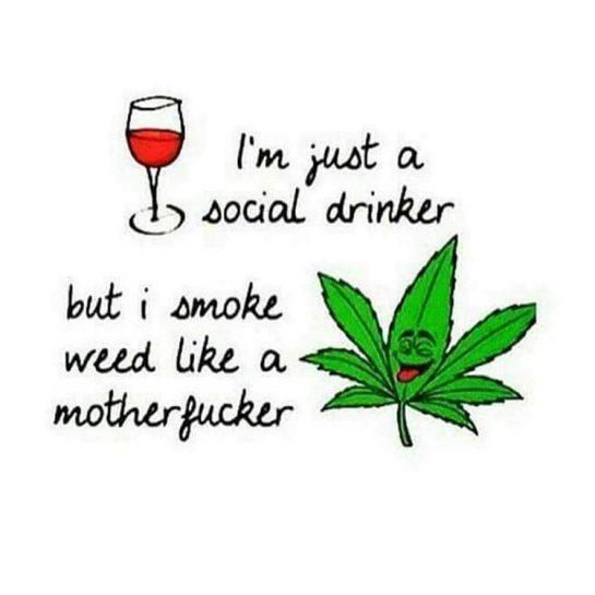 Story of my life lol 💯😂✌🏻👌🏻🔥💨💚 #highlife #highsocitey #highmom #420Problems#stonerchick #stonercouple #cannabiscommunity #cannamommy #710community #710lover #stonermom #girlswhodab #dabchick #dabsfordays #420everday #budlife #budlove #staylifted #weedstagram #dabstagram #dablife #momswhodab #parentsforpot #710moms #bongsareagirlsbestfriend #420mom #stonermemes #memesfordays #dailymemes #420funnies via @cannasammy92