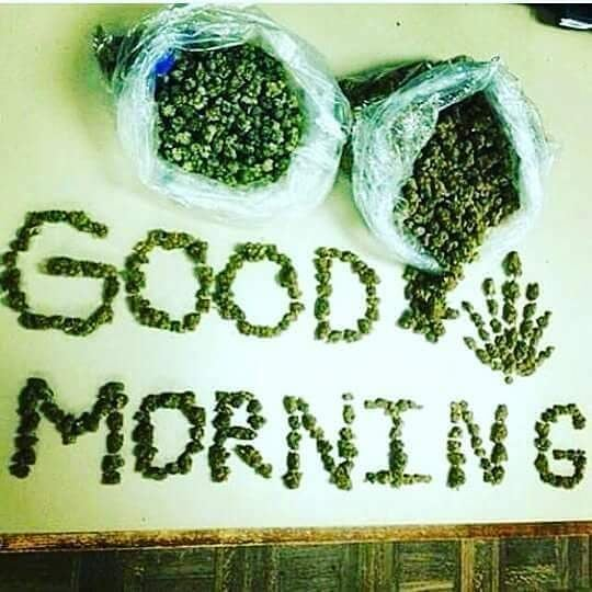 Good Morning my fellow stoners 😊✌🏻🤘🏻🔥💨💚 #420Problems#wakenbake #highlife #highsocitey #highmom #stonerchick #stonercouple #cannabiscommunity #cannamommy #710community #710lover #stonermom #girlswhodab #dabchick #dabsfordays #420everday #budlife #budlove #staylifted #weedstagram #dabstagram #dablife #momswhodab #parentsforpot #710moms #bongsareagirlsbestfriend #420mom #stonermemes #memesfordays #dailymemes #420funnies via @cannasammy92