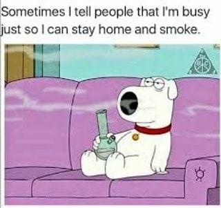 Guilty lol 😂🤣👌🏻🔥💨💚 #420Problems#highlife #highsocitey #highmom #stonerchick #stonercouple #cannabiscommunity #cannamommy #710community #710lover #stonermom #girlswhodab #dabchick #dabsfordays #420everday #budlife #budlove #staylifted #weedstagram #dabstagram #dablife #momswhodab #parentsforpot #710moms #bongsareagirlsbestfriend #420mom #stonermemes #memesfordays #dailymemes #420funnies via @cannasammy92