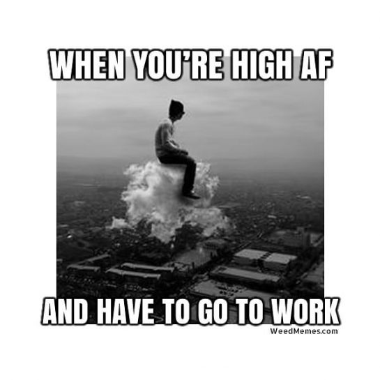 Hahahaha 😊😂🤣👌🏻✌🏻🔥💨💚 #420Problems#highlife #highsocitey #highmom #stonerchick #stonercouple #cannabiscommunity #cannamommy #710community #710lover #stonermom #girlswhodab #dabchick #dabsfordays #420everday #budlife #budlove #staylifted #weedstagram #dabstagram #dablife #momswhodab #parentsforpot #710moms #bongsareagirlsbestfriend #420mom #stonermemes #memesfordays #dailymemes #420funnies via @cannasammy92