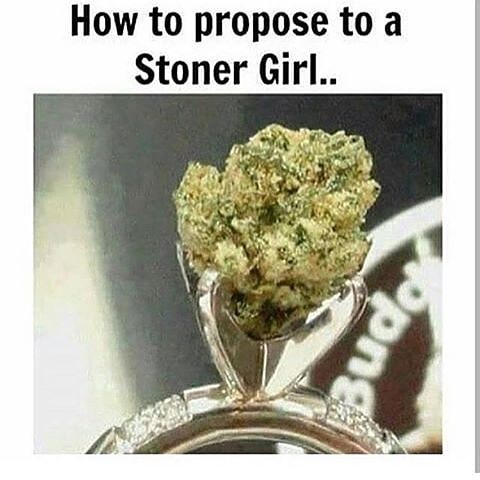 Hahahahaha 😂🤣👌🏻✌🏻🔥💨💚 #420Problems#highlife #highsocitey #highmom #stonerchick #stonercouple #cannabiscommunity #cannamommy #710community #710lover #stonermom #girlswhodab #dabchick #dabsfordays #420everday #budlife #budlove #staylifted #weedstagram #dabstagram #dablife #momswhodab #parentsforpot #710moms #bongsareagirlsbestfriend #420mom #stonermemes #memesfordays #dailymemes #420funnies via @cannasammy92
