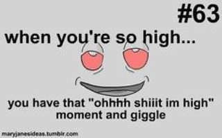 Literally me 😂🤣😊👌🏻🤘🏻🔥💨💚#420Problems #highlife #highsocitey #highmom #stonerchick #stonercouple #cannabiscommunity #cannamommy #710community #710lover #stonermom #girlswhodab #dabchick #dabsfordays #420everday #budlife #budlove #staylifted #weedstagram #dabstagram #dablife #momswhodab #parentsforpot #710moms #bongsareagirlsbestfriend #420mom #stonermemes #memesfordays #dailymemes #420funnies via @cannasammy92