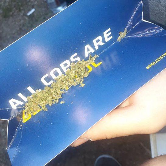 bastards🔥👀 - #420Problems#weed #joint #blunt #420 #blazeit #hash #weedhumor #smoke #bobmarley #stayblazed #high #stoned #rasta #cannabis #lfl #fff #instagram #love via @lasskiffen