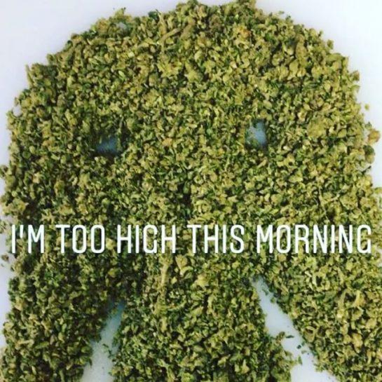 #420Problems#wakeandbake #eldopitofuego #kush #wax #hash #oil #prerolls #wedontsmokethesame #premiummarijuanacigar #thebest #fuego #dab #710society #420 #weedstagram710 #puffpuffpass #mmj #dagoodgoodxpress #fuegolifestyle #420humor #starwars #darthvader via @eldopitofuego