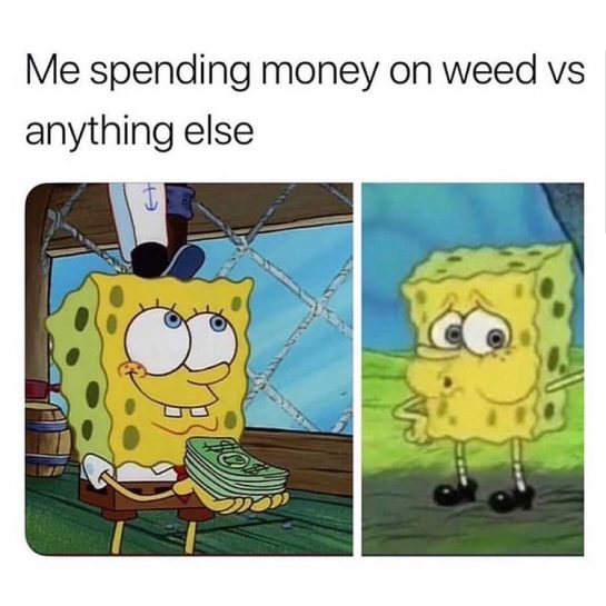 Relatable😂🌿 . . . . . . . . . . . #weedlife #weedsociety #weedhumor #weedmeme #bud #kush #maryjane #marijuana #pot #trees #pothead #potheadhumor #potheadsociety #potheadlife #stoner #stonerlife #stonersociety #stonerdays #stonermeme #stonerhumor #420 #420life #420society #420humor #420life #smokeweed #smokeweedeveryday #high #highaf #roll joint #blunt via @2high_2think#420Problems, #420funnies, #420memes, #marijuanafunnies,