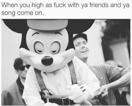 Gonna be me this weekend😂🙈 • • • #weedjokes #weedmemes #funnyweed #potheadhumor #funny #highlife #highwiththeboys #stonersbelike #potheadsociety #potheadsbelike #stonercomedy #weed #marijuana #positivevibes #potitive #weekendvibes #isittheweekendyet #stonercouple #stonercouples #highsociety #pnwstoners #bestsmoke #stoners_of_instagram #stonerdaily #hightimes #staystoney via @thcpnw#420Problems, #420funnies, #420memes, #marijuanafunnies,