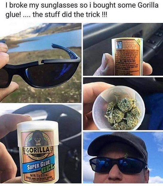 Heheh😏 #lol #memes #stonermemes #potheadhumor #cannabiscommunity #gorillaglue #broken #sunglasses #ganja #420nation #haha #jokes #nshit #hashtags #like4like #followme #f4f #ganjaman #hippie #rainyday via @thedabbinhippie#420Problems, #420funnies, #420memes, #marijuanafunnies,