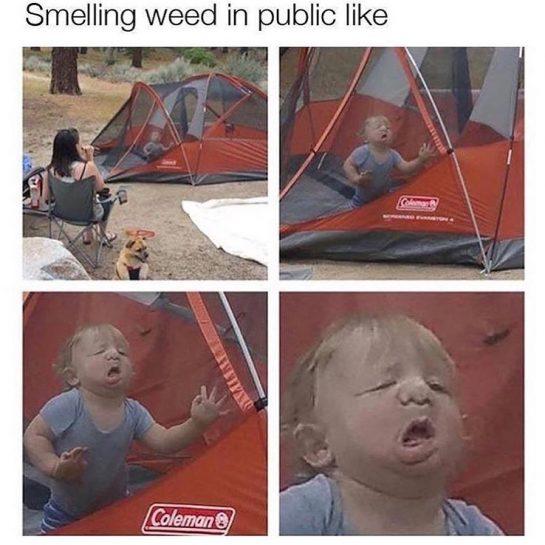 Relatable #sloth #weedmemes #funnyweedmemes #dankweedmemes #marijuanamemes via @your.favorite.sloth#420Problems, #420funnies, #420memes, #marijuanafunnies
