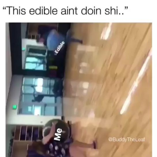 @buddytheleaf nailed it - Shoutout to edibles. The sneakiest fuckers 👊🔥 Follow @buddytheleaf #buddytheleaf #edible #weed #sneakyfuckers - #regrann via @cannabisreportgr#420Problems, #420funnies, #420memes, #marijuanafunnies