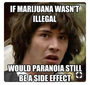 🤔hmm...👇👇what y'all think??? #lilgrowmamí #NEgreenQueen #cannabiscommunity #justforlaughs #weedmeme #weedhumor #420funny #somethingtothinkabout #whatdoyouthink #cannabis via @holla_at_chya_girl#420Problems, #420funnies, #420memes, #marijuanafunnies