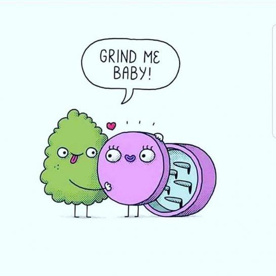 "#wakesandbake 💨💨💨💨💨💨 RepostBy @bluntednewz: ""#grindmebaby #goodmorning #gramfam #420funny 😂🤣😂🤣 #weedmemes #knowyoursource #medicatesafely #maryjane . . . . . . . ✌😎#staybluntedmyfriend✌"" via @willsativalungz#420Problems, #420funnies, #420memes, #marijuanafunnies"