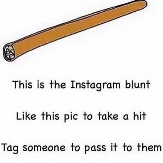 TAG YOUR FRIENDS 😂 🍃🍃🍃🍃🍃🍃🍃🍃🍃🍃 FOLLOW US @pothead_friend @pothead_friend ****************************** #explore #viral #funny #420funny #stupidfunny #tagyourfriends #tag #lol #commentCheeseCurds #explorepage #comedy #followus #followus #dt #funnyposts #offensivememes #offensivehumor #trashmemes #hilarious #maryjane #stoner #humor #stonerhumor #repost #share #silly #dankmemes #dank #memes via @pothead_friend#420Problems, #420funnies, #420memes, #marijuanafunnies