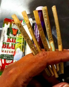Esse é o 🇧🇷 que eu quero ... ❤🍁💥💣 . . . . #cannabis #stonernation #weedsociety #ganja #dab #baseado #brasil #weedlife #green #blunt #prensado #marijuana  #cannabiscommunity #legalizabrasil #hemp #onda #cannabiscup  #gethigh #bong #weed #weedhumor #weednation  #maconha #legalize via @umfino_1#420Problems,
