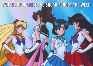 ☠☠☠ @celestialdabs . . . . . #sailormoon #anime #stonergirl #420 #weedmeme #weedmemes #humor #funny #sailormars #sailorjupiter #sailormercury #sailorvenus #stonerbabes #cannababes #cannabiscommunity #dankgals #dab #dabs #dabtool #dablife #animememes #animegirls #sailormoonmeme #highsociety #stoner #smoke #girlswhosmoke #weedhumor #stoned #baked via @celestialdabs#420Problems,