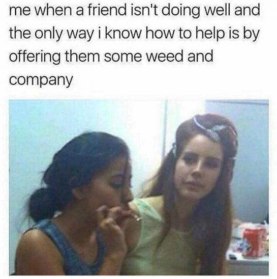 Here This Will Help #weedhumor #weedhumor420 #weedmemes #420memes #dankmeme #dankmemes #kushmemes #memesweed #stonergirl #stonergirls #stonerchick #girlswhosmoke #girlswhodab #kushdolls #ganjagirl #ganjagirls #bakedbeauties #bongbeauties #litladies #cannababes #dabberchick #420girls #710girls #420chicks #weedwomen #thcuties #somegirlsgethigh #girlsgoneweed via @cannaddict420#420Problems,