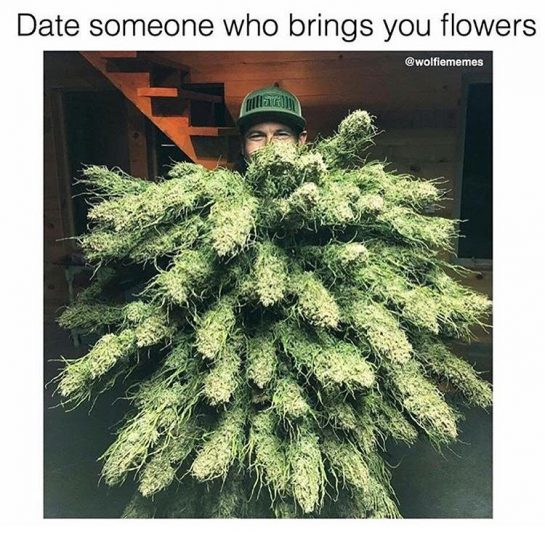 If daddy doesn't bring you flowers is he even your daddy? 🤣 • • • • ❗Don't forget to follow @thiccc_betch & @_supercoven_ ❗ • • • • #backwoods #backwoodsonly #backwoodsbarbie #backwoodsgang #420 #420girls #420memes #420life #blunts #bluntsmoke #dabs #marijuana #blazed #blazedoutlondon #blazedbabes #weedporn #weed #weedmemes #weed🍁 #weedman #weedgirls #420gang #stoned #stonedtothebone #stonedsociety #stonedaf #stonedlife via @thiccc_betch#420Problems, #420funnies,