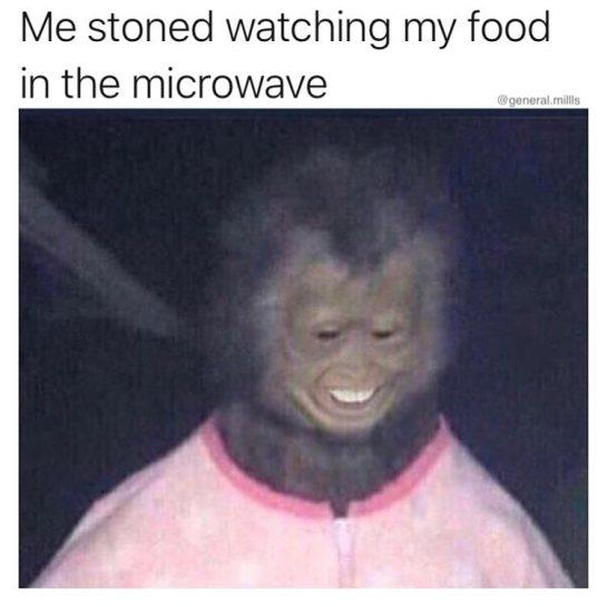 u lookin like a snack @general.millls @general.millls @general.millls • • • • #stonedandstarving #whenyourehungry #microwavefood #microwavedinner #tvdinner #munchies #munchies420 #420munchies #feels #waitingforfood #whenyourehigh #imhungry ##stonedaf #marijuanamemes #cutemonkey #waitingpatiently #happyboys #same #smokingweedeveryday #420memes #microwaveable #marijuanamunchies #cookingshows #cookingvideo #munchiestime #smokinweed #stillstoned #imcooking #stonerfood #stonermemes via @general.millls#420Problems, #420funnies, #420memes, #marijuanafunnies